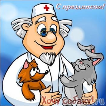 Ветеринарные клиники в Ангарске  адреса телефоны отзывы